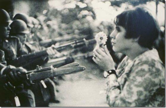 Fleurs au fusil (photo)